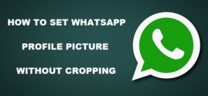 How to set WhatsApp profile picture without cropping [Beginner's Guide]